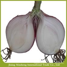 2016 nova temporada boa qualidade cebola vermelha fresca