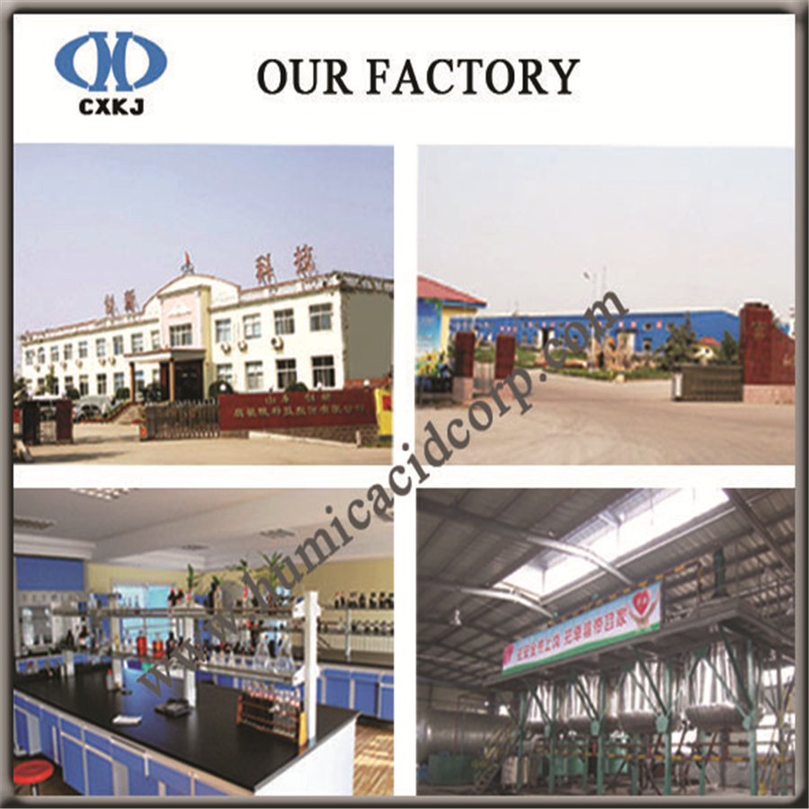 Nitro humic acid factory