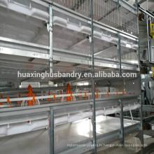 Cages de volaille galvanisées pour bébés de poule à vendre / poulet Poulet Poulet