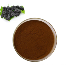 Pure natural factory supply 100% natural mulberry fruit juice powder