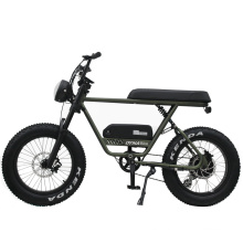 High Speed 48V 750W rear motor fat tire electric bicycle e bike