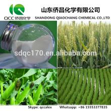 Herbicde / Dicambatique Agrochimique 98% TC 48% SL 70% WDG N ° CAS: 1918-00-9