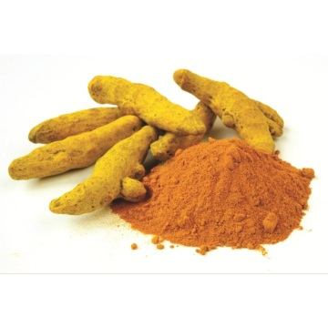 Curcumin Yellow Natural Color gurkmeja Yellow Pigment