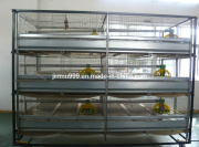 Poultry Farm Layer Cage (JF-CDS650)