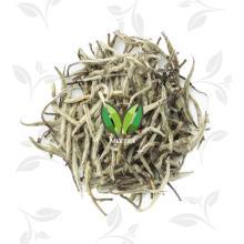 Bai Hao yin zhen Silver Needle white tea