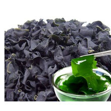 Dalian dried laver seaweed for sale