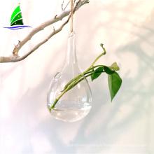 vase en verre soufflé hydroponique en verre de terrarium en gros