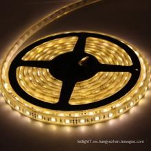 Tira de luz LED LED AC 12V / 24V LED