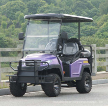 Carrinho de golfe elétrico de 4 rodas com assento traseiro