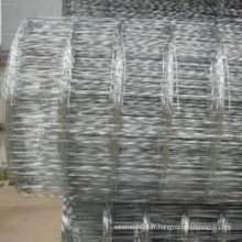 Chian factory Nouvelle vente (electro & hot trempé / revêtu de PVC galvanisé) Grass Land Fence (Manufactory)