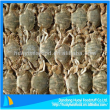 yummy fresh frozen mud crab with best price