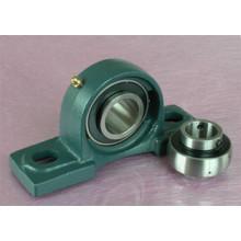 Ucp Bearing Units/Mounted Bearing/Block Bearing (UCP207 UCP207-20 21 22)