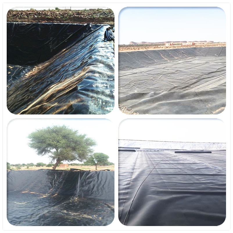 Buy HDPE Material Pond Liner
