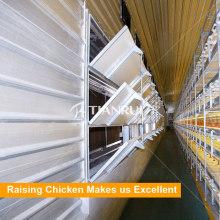 Tianrui Automatische Schicht Broiler Geflügel Hühnerfarm Bodenbelag System