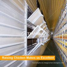 Egg Chicken House Environment Control System Diseños para Capas