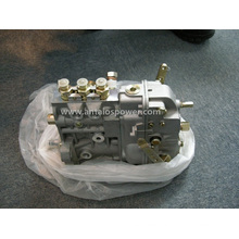 Fuel Injection Pump-Deutz F3l912 Injection System