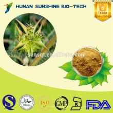 pene fuerte medicina 100% natural puro tribulus terrestris extracto