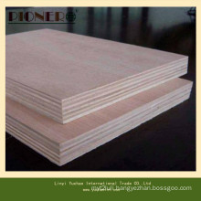 Commercial Plywood for Algerie Market