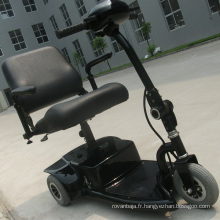 Voiture tricycle électrique pour personnes âgées handicapées et handicapées (DL24250-1)