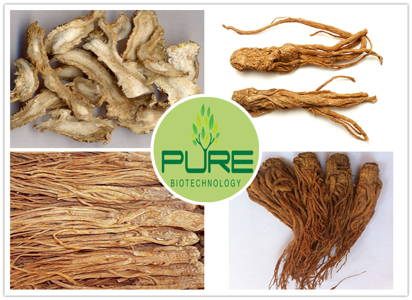 Radix Angelica Sinensis Whole Roots 3