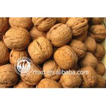 лучшее качество inshelled производитель грецкие орехи