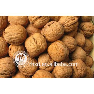 best quality inshelled walnuts manufacturer