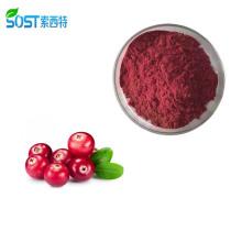 Hot Selling Wholesale Fresh Cranberry Juice Extract Powder