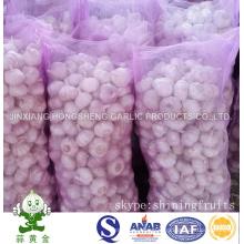 Mesh Bag Packing New Crop Fresh Chinese Normal White Garlic
