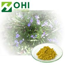 Poudre d'acide carnosique d'extrait de feuille de romarin