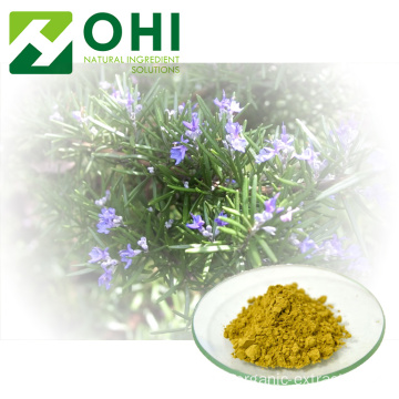 Rosemary Leaf Extract Serbuk Asid Carnosic