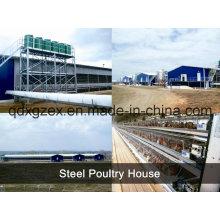 Structure en acier Maison de volaille / Maison à poulet (pH-16133)