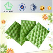 Embalagens plásticas do uso do abacate Popolar padrão do mercado de Canadá do teste de FDA que empacotam feito em China