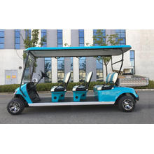 2 seats electric golf cart with cargo box