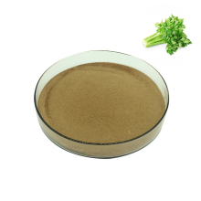 Chinese supply pure natural fruit 100% organic celery root powder in herbal extract