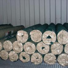 Fil de poulet / hex. Treillis métallique pour clôture grillagée