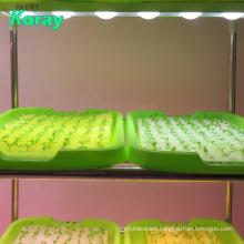 Koray Plant nursery grow light LED module Full Spectrum Plant Seedling Growth Lamp