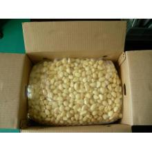 Новый урожай очищенного чеснока (180-220грен / кг)