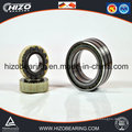 Factory Hot Sales Cylindrical Rolling Bearing (NU1038M)