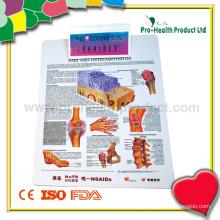 Prancheta Padrão Médico (PH4252S)