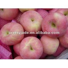 premium Fuji apple