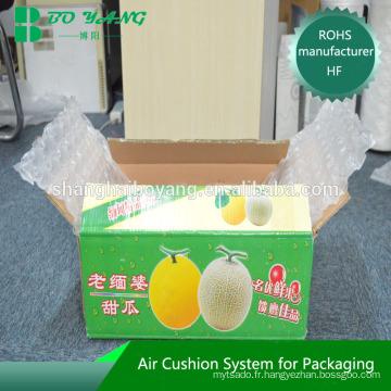 Shanghai film de coussin d'air China site e-commerce évaluations environnementales