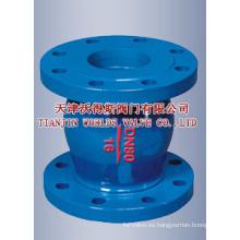 Válvula de retención de boquilla bridada de hierro fundido nodular (WDS)