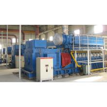 Centrale électrique à double combustible 1MW-100MW