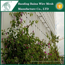 Malha de arame de aço inoxidável de alta qualidade para suporte de plantas