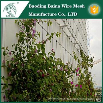 Malla de alambre de acero inoxidable de alta calidad para soporte de plantas