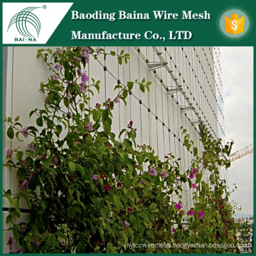 High quality stainless steel wire mesh for plant support