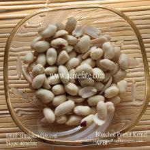 Nova safra Blanched Peanut Kernel