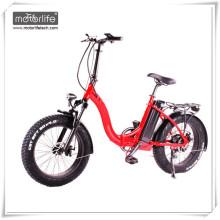 Elektro-Fahrrad High Power 48V1000W 20inch Fett elektrisches Fahrrad, ebike