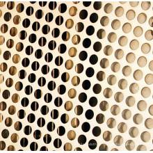 Metal perfurado inoxidável / metal perfurado processado mais adicional /