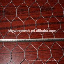 poultry netting chicken mesh/ chicken wire mesh/ chicken mesh